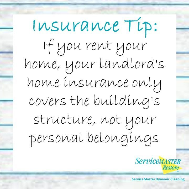 Insurancetip If You Rent Your Home Your Landlord S Home