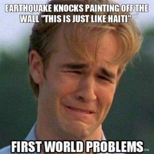 This is an environmental first world problem because it is nature affecting people. The D.I's it affects are GDP per capita because if the painting broke they would have to buy a new painting and L.E because some people might die from the earthquake. It shows the D.G because people in first world countries have better structure in their buildings which means in a first world country a painting on the wall will fall off while in a 3rd world country their house will probably be destroyed.