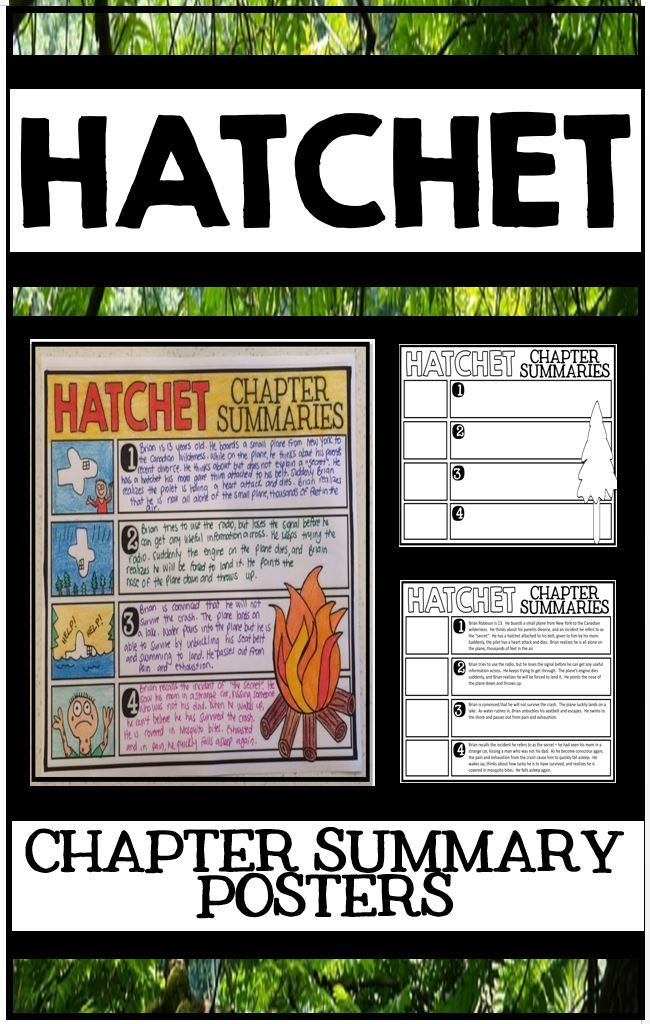 Hatchet by Gary Paulsen Novel Study Unit - Chapter Summary Posters