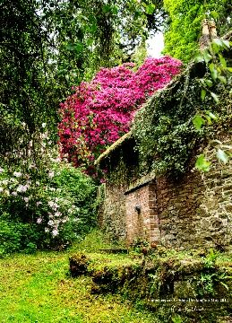 15th century Gamekeepers Cottage in Cockington Court country park - Devon, England
