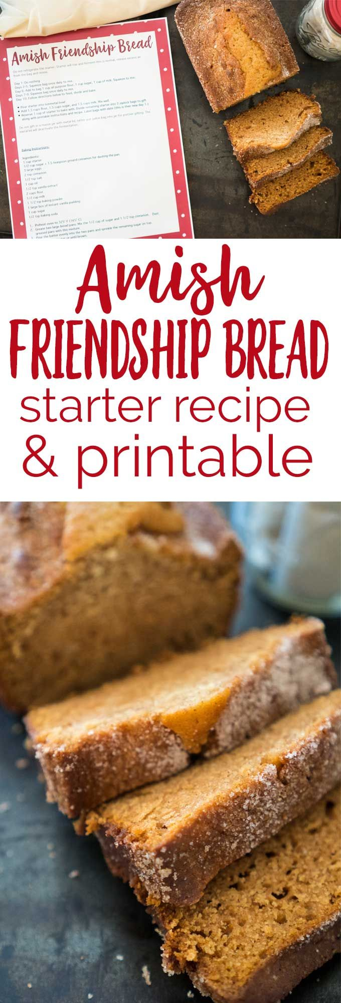 Amish Friendship Bread is the perfect recipe to share with friends. Now you can make your own with this starter recipe along with a free printable for gifting starter to others! #recipe #DIYgift #friendshipbread