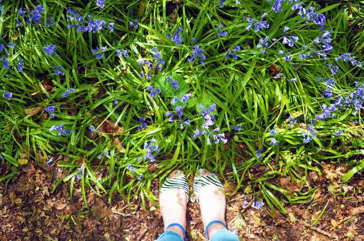Bluebell woods, A friends wedding & Making plans #LittleLoves