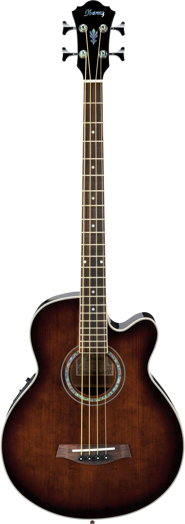 Ibanez AEB10 acoustic electric bass :)    Surely I can learn to play a 4-string...right?