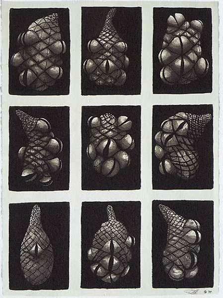 http://www.peterrandall-page.com/individual-exhibitions/artwork/nine_she-oak_cones_1994.jpg