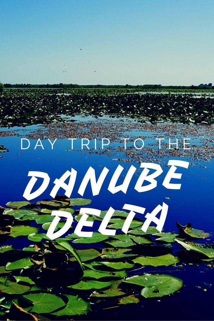 The Danube Delta in Romania is one of Europe's last great wilderness and a perfect place to be discovered with Discover Danube Delta Tours. A review of their tour