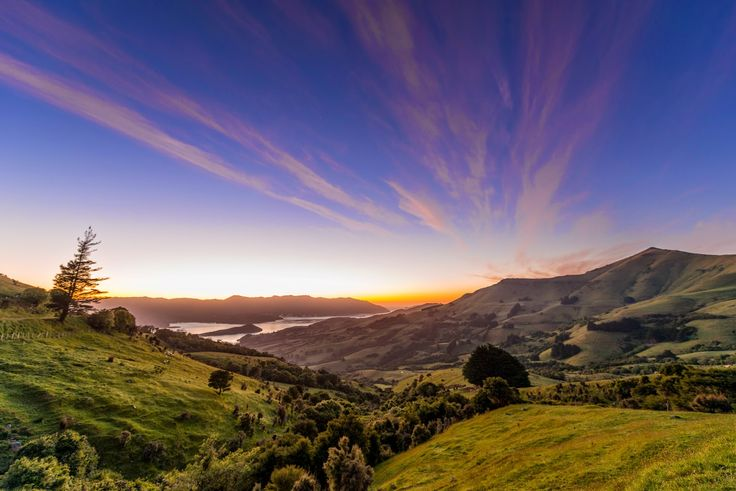 Overlooking the small town of Akaroa, New Zealand  Travis Longmore Photography