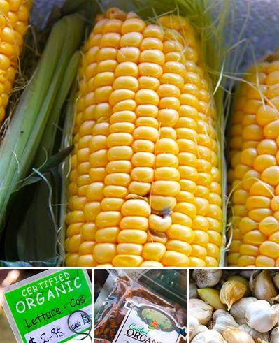 some beautiful organic offerings @ Chatswood Market  https://www.facebook.com/media/set/?set=a.497385060317967.1073741825.147516075304869&type=3