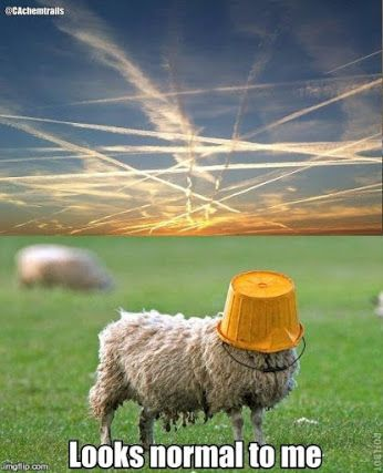 Image result for chemtrails ill