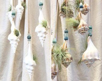Dieser 22 Zoll Runde Durchmesser hängende Wand-Pflanzer ist handgefertigt speziell für Luft Pflanzen - Sukkulenten können Sie, wie auf den Bildern gezeigt, aber mit Moos - kein Schmutz eingesetzt werden.  Sie sehen schick an der Wand und können verwendet werden, im Innenbereich oder auf eine überdachte Veranda. Das Pflanzgefäß ist eine große Runde Aluminiumscheibe, gibt es ein heavy-Duty Kunststoff Halbmond angebracht, die wie ein Terrarium mit kleinen Felsen gefolgt von Moos dann…