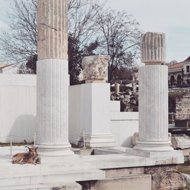 Wintertime in #Athens, is the best period to explore the monuments! #Culture #History Photo credits: @athens_city