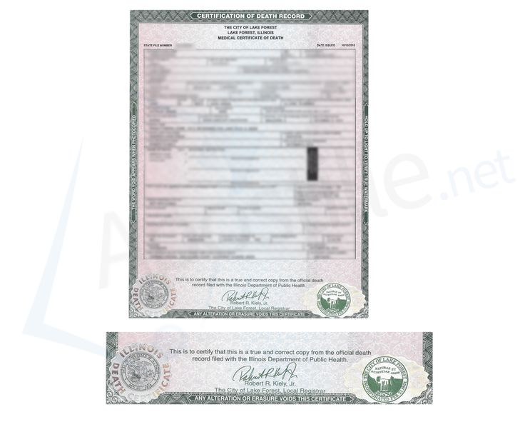 County of Cook State of Illinois Marriage License signed by David D - copy chinese marriage certificate translation template
