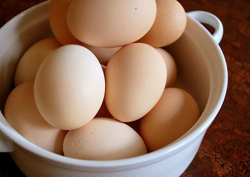 Why organic eggs from the store are an overpriced, overhyped scam compared to truly healthy eggs straight from a local farm or neighbor.