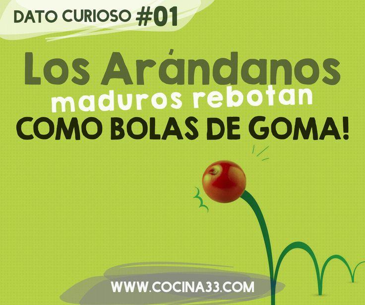 Los Arandanos