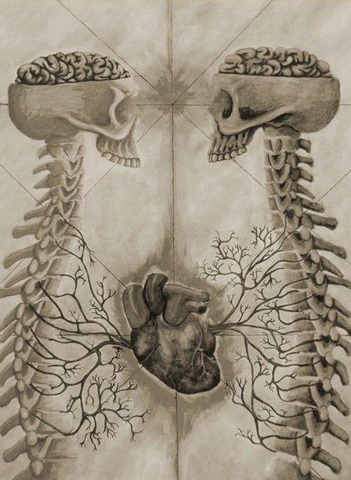 Arte E Anatomia...