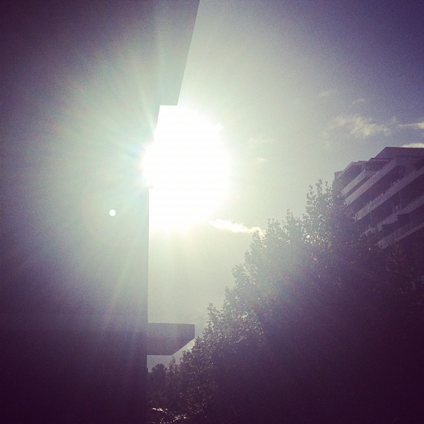 Day 16: #Morning (the morning #sun from our Surry Hills #Sydney balcony) #janphotoaday