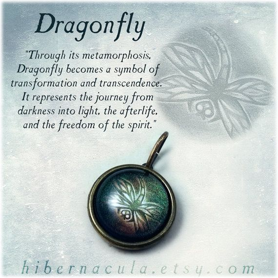 Dragonfly Spirit Brass Animal Totem Pendant by Hibernacula