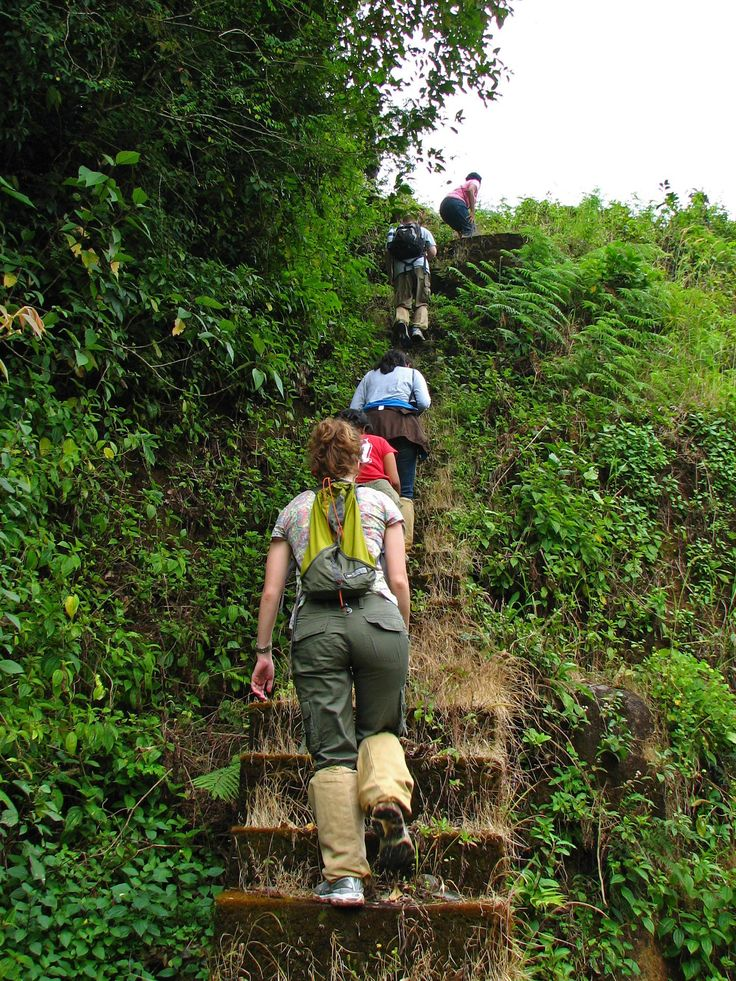Best Trekking Experience in Kerala can only get from here.