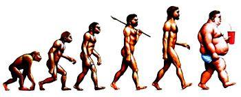 Évolution-homme