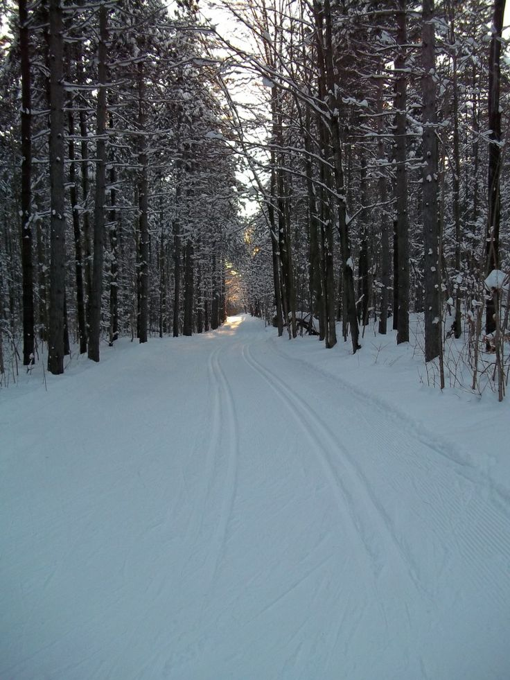 Beautiful, Pristine Cross Country Trails at Hardwood Ski and Bike! Come see for yourself!