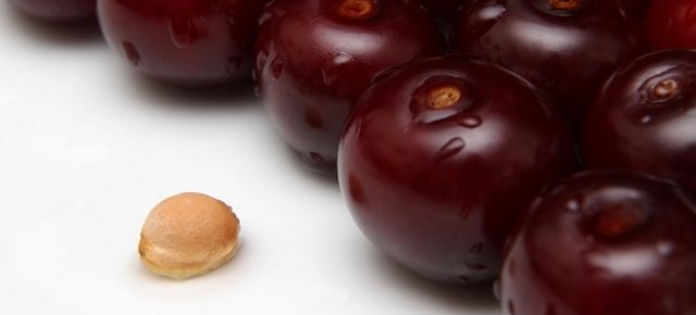 Mire jó a meggymag?   A group of cherries and a cherry seed.