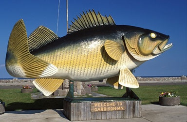 102 best minnesota bound images on pinterest minnesota for Fishing in duluth mn