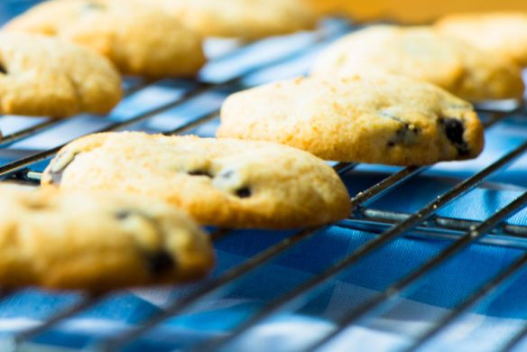 Grain-Free Chocolate Chip Cookies--Fructose Malabsorption Recipes