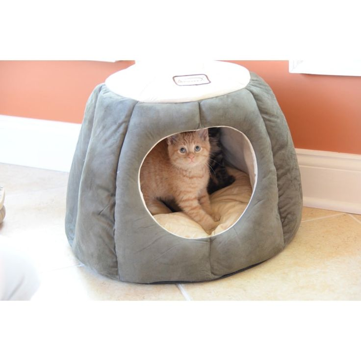 Armarkat Quilted Halo Cat Bed | Overstock.com Shopping - The Best Deals on Other Pet Beds