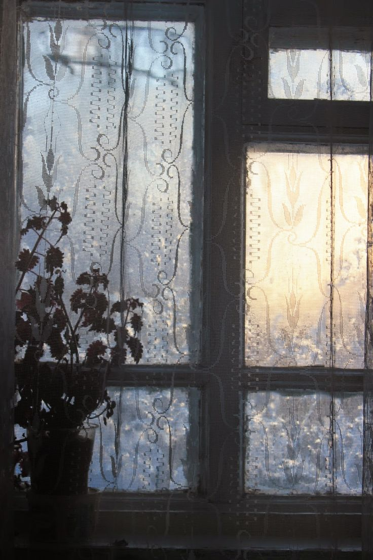 Жизнь горожанки в деревне: (-17)   Утро было красивое