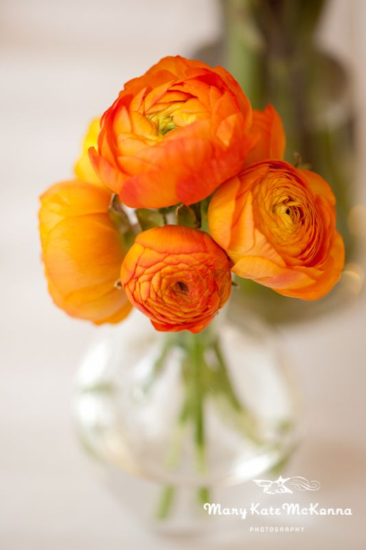 Orange wedding flower inspiration- minimalist orange ranunculus centerpiece arrangement.