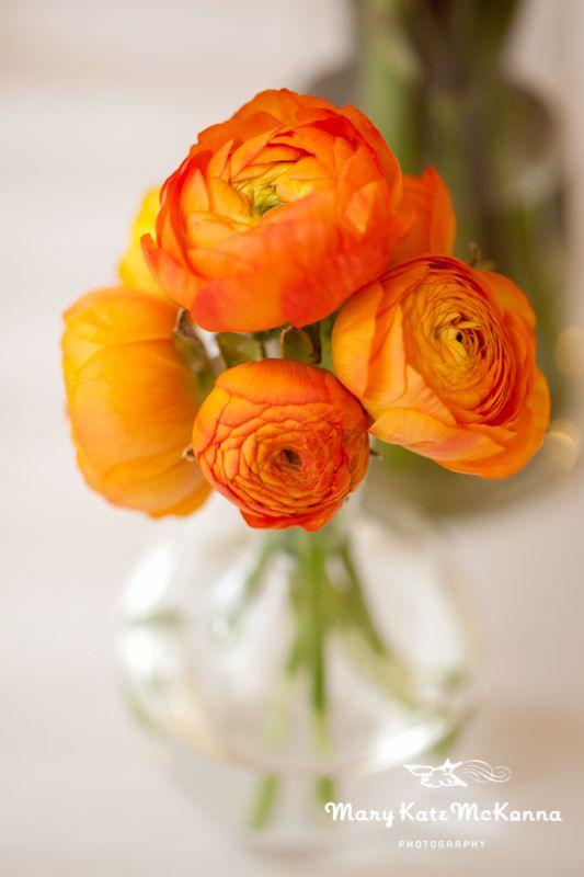 Orange wedding flower inspiration- minimalist orange ranunculus centerpiece arrangement.