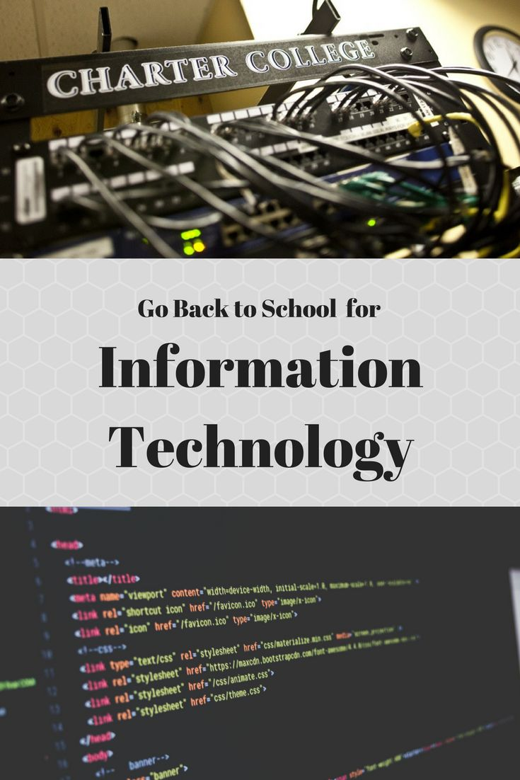a focus on a career in information technology Information technology (it) is a stem discipline that covers the systems that store, organize, and disseminate data in 2016, it primarily covers computing technology.