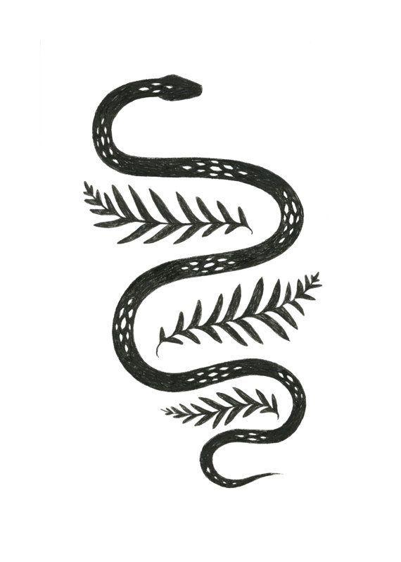 Snake & Fern illustration by Lauren Blair
