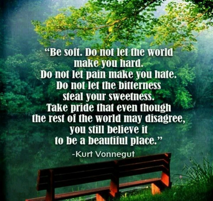 Be soft...Kurt Vonnegut quote Teaching Quotes!! Pinterest Be ...