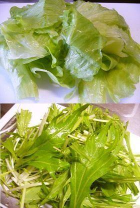簡単!ほぼ真空で野菜を新鮮保存!!
