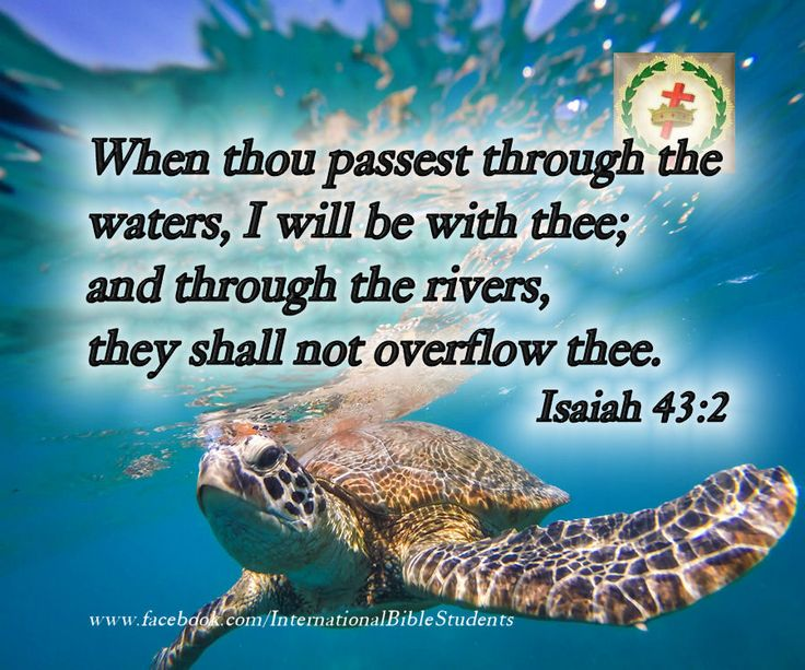 Isaiah 43:2 passest through the waters through the rivers, they shall not overflow thee