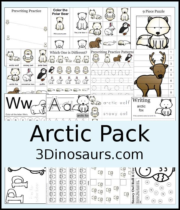 FREE Arctic Pack 65 Pages