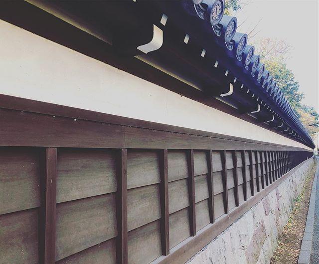 瓦塀 瓦塀 塀 板瓦塀 漆喰塀 板塀 瓦 白壁 日本の塀 和風 一直線 真っすぐ 和風塀 Wafu Japan Instagood Likes Japanesestyle Tile Plated Zaun Fence Steccato Palis エクステリア 板塀 塀