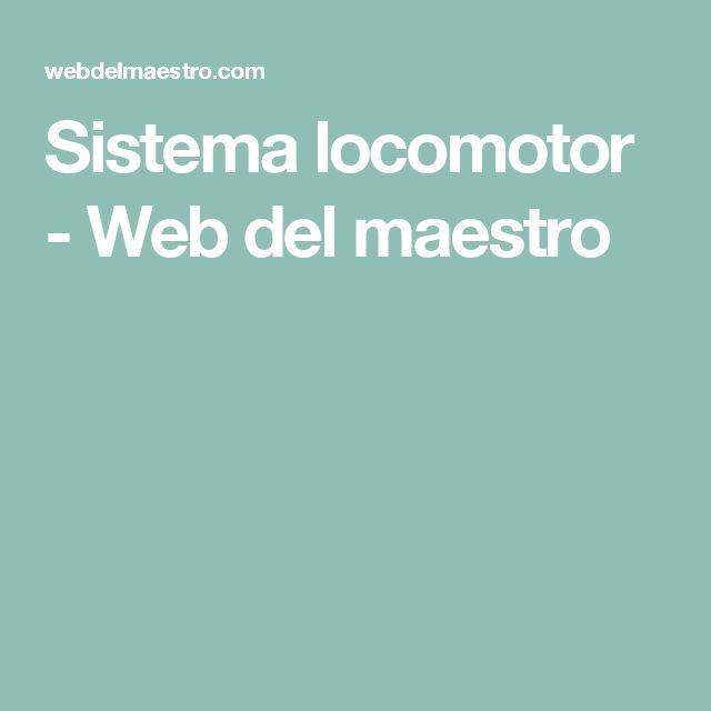 Sistema locomotor - Web del maestro