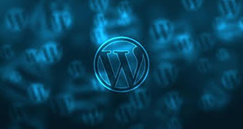Custom or WordPress Site - This article helps a new entrepreneur decide whether to build a custom website or build a WordPress website.