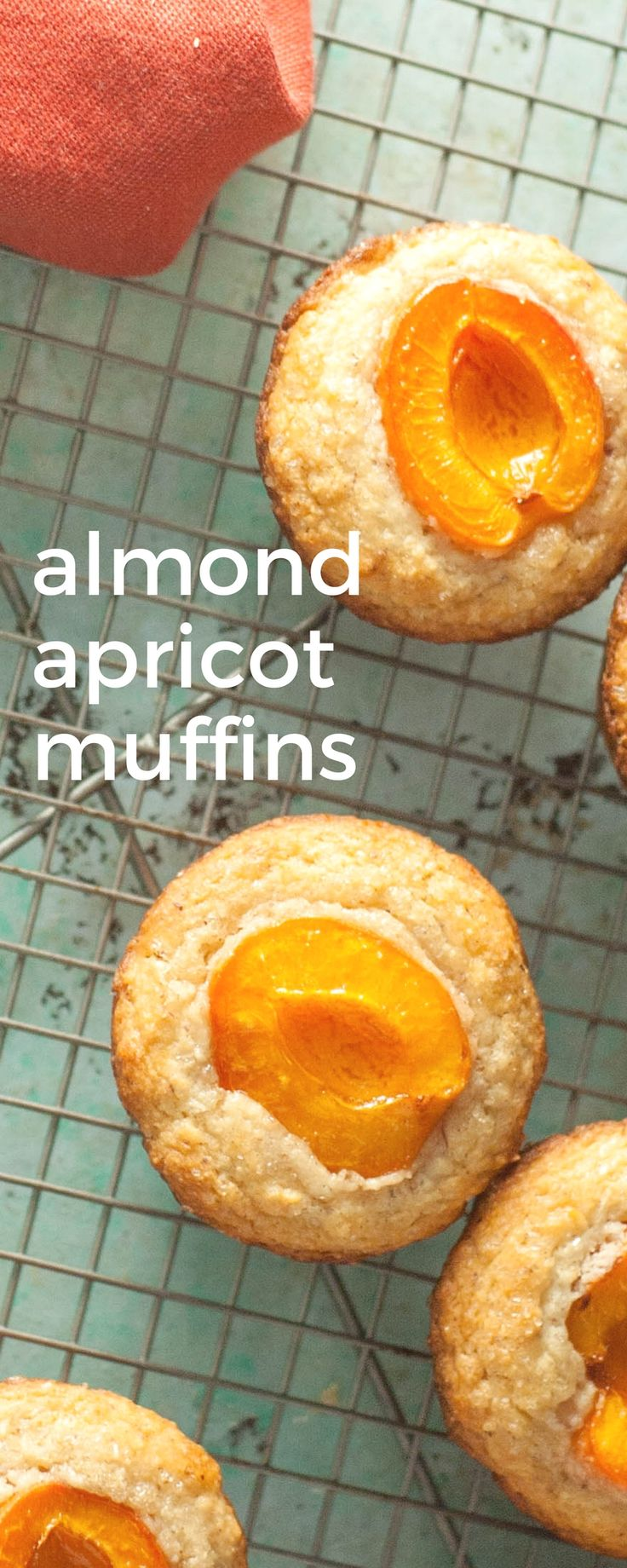 Almond Apricot Muffins. A nutty almond muffin crowned with half an apricot sprinkled with sugar. Gluten-free friendly. via @blossomtostem