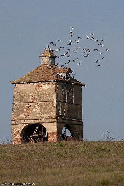 Pigeonnier à L'Isle Jourdain (Gers, 32)