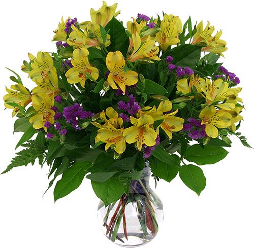 http://profiles.delphiforums.com/thainexpens  Discover More Here - Discount Flower Delivery  5 Ways On How you can Obtain One of the most From This Affordable Flowers. The Background Of Affordable Flowers.
