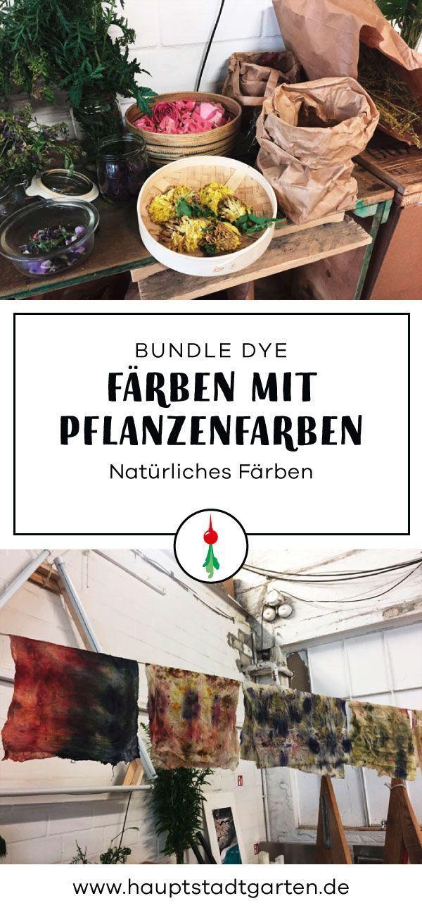 Fantastisch Farbzug Buch Bilder - Druckbare Malvorlagen - amaichi.info