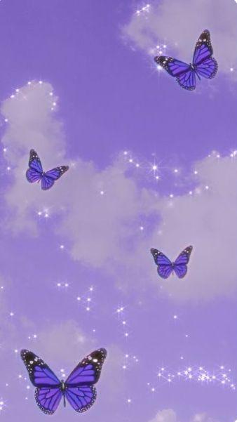 Butterflies in 2020 | Butterfly wallpaper, Butterfly ...