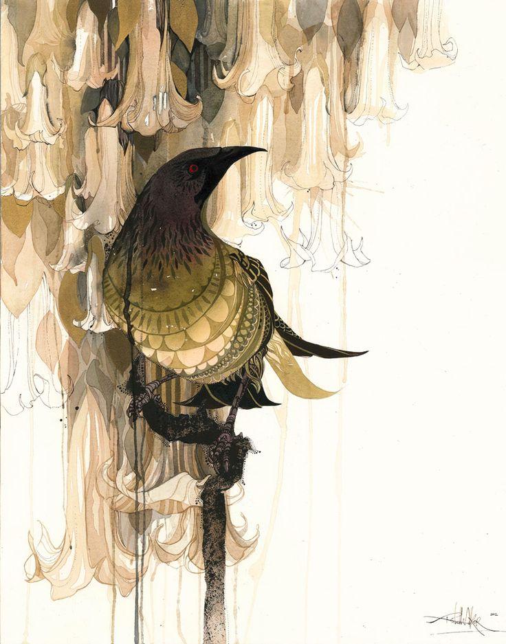 Illustrations by Rachel Walker