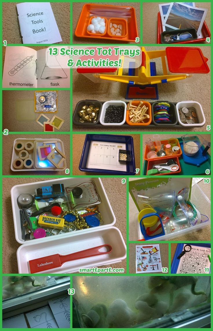 13 science-themed tot trays and activities! Explore magnets, weight, colors, seed sprouting, sort items by land/sea/air, and more!