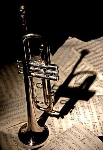 trumpet, music, notes, black and white, sepia, horn, shadow