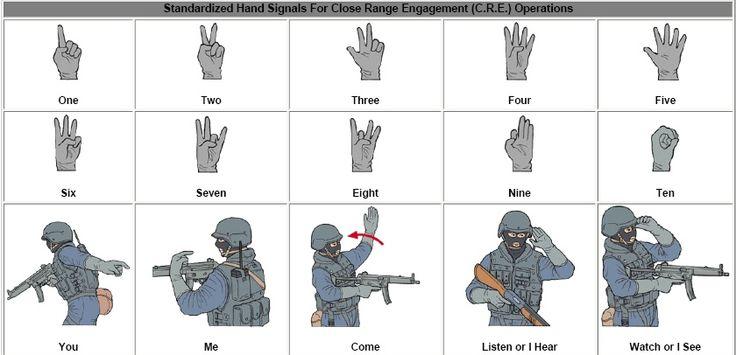 5A/El equipo deseable es: -Correaje completo (modulo de asalto). Chaleco de combate (si lo hay). -Mochila de combate (modulo de combate) -Chaleco antifragmentos (deseable antibalas para los hombres que asaltan/limpian) -Casco antifragmentos (ídem).-  -Protección ocular (gafas o pantalla) para detener esquirlas metálicas o de piedras, ladrillos... -Máscara NBQ (en su caso equipo autónomo). Rara vez traje NBQ completo.
