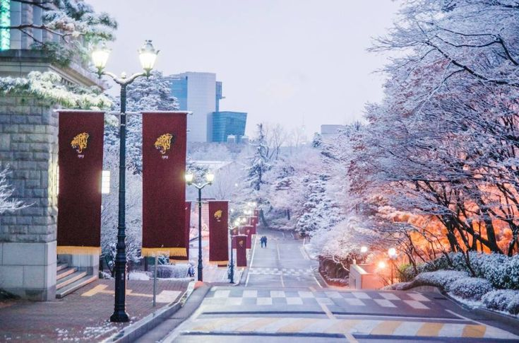 Picture yourself in Korea this Winter at Korea University!   allkpop.com