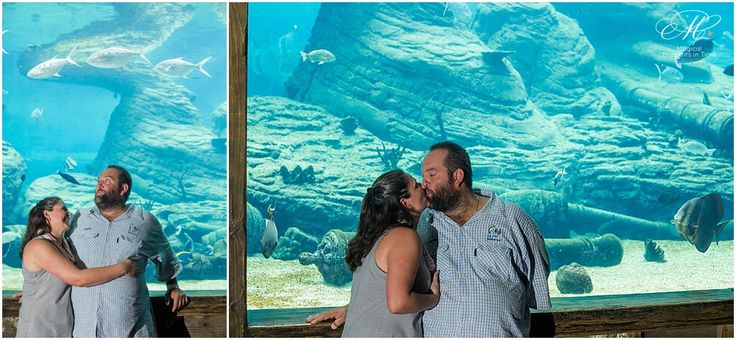 ushaka-aquarium-durban-engagement-photography